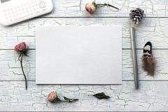 Podławy szyk, Boho Mockup dla prezentacj z suchymi różami Zdjęcie Royalty Free