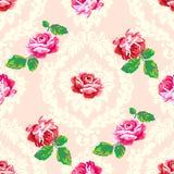 Podławy szyk róży adamaszka wzór Fotografia Royalty Free