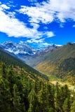 Pod śnieżnymi górami dolina Obraz Stock
