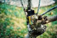 """New Vape pod system for quitting smoking habit alternative on small tree branches. POD or """"ultra-portable systems"""" are essentially the middle-ground stock images"""