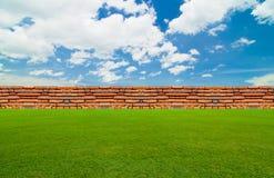 Pod niebieskim niebem zielony pole Fotografia Royalty Free