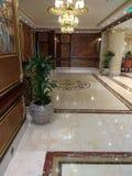 Podłoga z fkower garnkami z kwiatem Obraz Stock