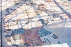Podłogowa mozaika w Willi Romana Del Casale, Sicily Zdjęcie Stock