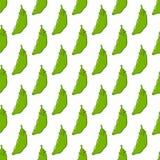 Pod of Peas Seamless Pattern on White Stock Photos