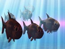 pod wodą Zdjęcie Stock