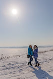 Pod zimy słońcem Obrazy Stock