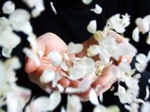 podaj płatków kwiatu się zdjęcie stock