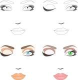 podaniowy makeup próbek plan ilustracja wektor