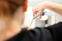 Podcinać rozszczepione końcówki włosy obraz royalty free