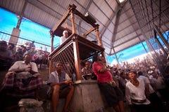 Podczas balijczyka tradycyjnego cockfighting Obrazy Royalty Free