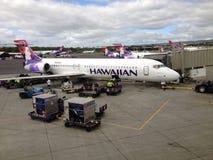 PODCZAS lota hawajczyka dróg oddechowych Zdjęcia Stock