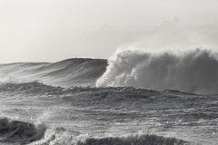 Poder branco preto da onda Fotografia de Stock Royalty Free
