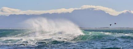 Poder de água deixando de funcionar do oceano da onda de oceano da onda Quebra poderosa das ondas de oceano Onda na superfície do Imagem de Stock