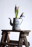Poder de café vieja con el tulipán Fotografía de archivo