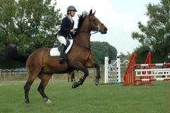 Poder de cavalo  Imagem de Stock Royalty Free
