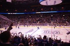 Poder de la toalla en el NHL Imagen de archivo libre de regalías