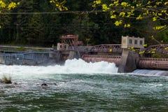 Poder hidroelétrico da represa de Leaburg fotografia de stock
