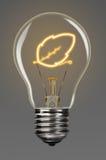 Poder renovável Imagem de Stock