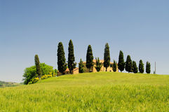 Podere Royalty Free Stock Image