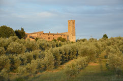 Podere Toscano Royalty Free Stock Photo
