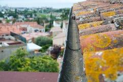 Podeszczowa rynna na starym dachówkowym dachu obrazy stock