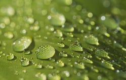 Podeszczowej wody kropla na namiocie zdjęcie royalty free