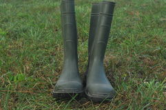 Podeszczowi buty, gumowi buty stoi na mokrej łące Fotografia Stock