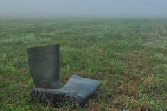Podeszczowi buty, gumowi buty stoi na mokrej łące Zdjęcia Stock
