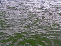 podeszczowy morze Obrazy Stock