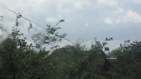 Podeszczowy na zewnątrz ogrodowego domowego okno zdjęcie wideo