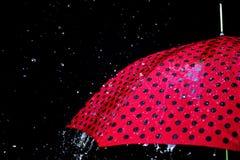 Podeszczowy opadowy parasol odizolowywający Obrazy Stock