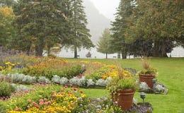 Podeszczowy spadać na kolorowych ogródach Zdjęcie Stock