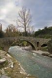 Podgorica Στοκ Εικόνες