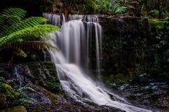 Podkowa spadki, Mt Śródpolny park narodowy, Tasmania, Australia Obraz Stock