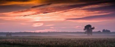 Podlasie - połysk granicy Zdjęcia Royalty Free