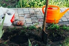 Podlewanie łopata w ziemi obok ziaren kwiat i puszka, sadząc kwiaty, Łóżko obraz stock