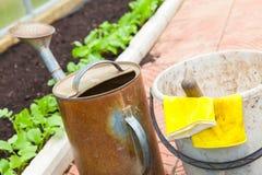 Podlewanie puszka, wiadro, żółte gumowe rękawiczki Obraz Stock