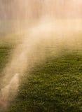 Podlewanie trawa w opóźnionym świetle słonecznym Fotografia Stock