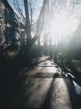 Podmiejska ulica Obrazy Stock