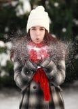 Podmuchowy śnieg Obrazy Royalty Free