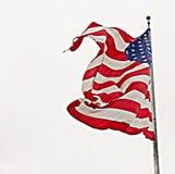 podmuchowy wiatr Fotografia Royalty Free
