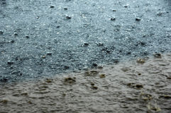 podmuchu deszcz Obrazy Stock