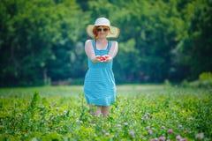 podnieś truskawki świeże owoce lata zdjęcia stock