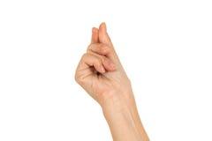 Podnosić Up kruszkę Zdjęcie Stock