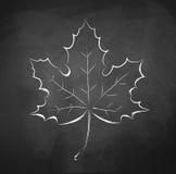 podobieństwo liści jesienią rozmiaru xxxl Zdjęcia Royalty Free