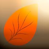 podobieństwo liści jesienią rozmiaru xxxl Obraz Stock