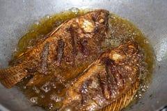 podpalająca ryb fotografia stock
