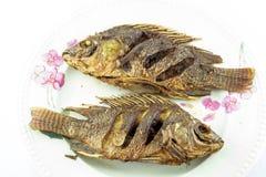 podpalająca ryb zdjęcie royalty free