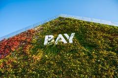 PODPALANA budynek pokrywa rośliną Fotografia Stock