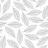 Podpalanego liścia bezszwowy wzór Fotografia Royalty Free